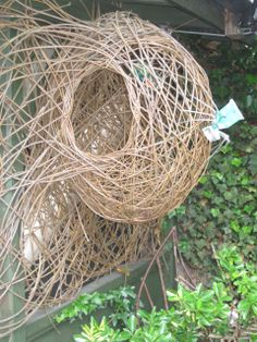 Willow weaving at Escape Community Art in Action, Stratford | Flickr - Photo Sharing!