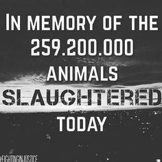#vegan #vegans #veg #goveg #govegan #eatplants #eatplantsnotfriends #eatplantsnotanimals #idonteatmyfriends #veganshare #veganquotes #vegansunite #veganlove #love #compassionateliving #compassion #peace #harmony #equality #morals  #ethics  #vegansofinsta #vegansofig #vegansofinstagram #veganshare #slaughter #standupforwhatsright #stupidquestions #ignorance
