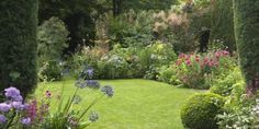 garden designer creates a plant-lover's paradise Another small garden with generous borders hiding the boundaries.Another small garden with generous borders hiding the boundaries. Back Garden Design, Cottage Garden Design, Flower Garden Design, Love Garden, Dream Garden, Small Back Garden Ideas, Cottage Garden Borders, Border Garden, Back Gardens