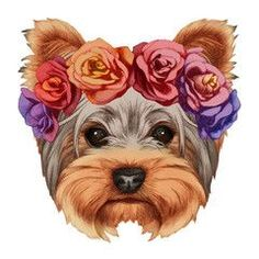 Portrait of Yorkshire Terrier Dog with floral head wreath. Hand-drawn illustration, digitally colored.