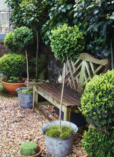 bilder zur vorgartengestaltung idee steine kiesel blumen pflanzen arten robust bank