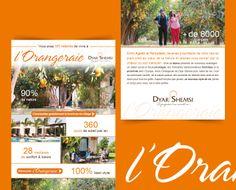 Newsletter // l'Orangeraie