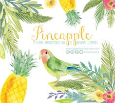https://www.etsy.com/mx/listing/232620162/pinas-en-acuarela-perico-loro-fiesta #tropical #pineapple #beachlife #summer #parrot #floral #watercolor #fruits #png #caribbean