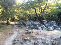 The footpath to Fonias lake. Stepping Stones, Island, Outdoor Decor, Beautiful, Block Island, Stair Risers, Islands