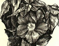 """Check out new work on my @Behance portfolio: """"Series - Nature on hatching"""" http://be.net/gallery/32498359/Series-Nature-on-hatching"""