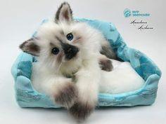 Little Princess. Kitten. By Anastasia Arzhaeva - Bear Pile