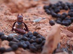 Apparently the wild deer donated to the #batneanderthal firewood fund again.  . #lego #desert #outdoors #deerpoop #utah #minifiguresbigworld #afol #legominifigures #toyslagram_lego #instalego #legostagram #brickcentral #legoart #legography #legogram #joecowlego #brickpichub #bricknetwork #toyartistry_lego #lego_hub #brickshift #vitruvianbrix #stuckinplastic #brickculture #toy_photographers #utahtoycrew #legonofilterfriday