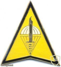 PHILIPPINES Special Forces Regiment (Airborne) badge Army & Navy, Special Forces, Beret, Philippines, Badge, Berets, Badges, Swat
