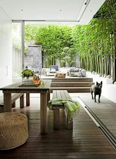 Covered outdoor eating area