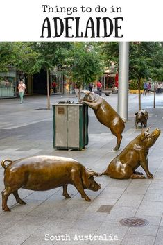 Adelaide is the gateway to the best places nature has to offer and the centre of Australia's premier wine regions. Here are some things to do in Adelaide. Perth, Brisbane, Melbourne, Sydney, Tasmania Australia, Adelaide South Australia, Visit Australia, Western Australia, Australia Trip