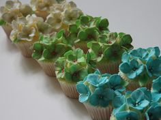 Hydrangea Cupcakes. A labour of love!