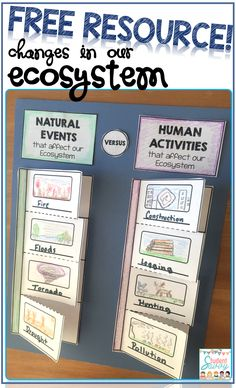 Free Resource - Foldable activity that highlights the changes in our ecosystem (natural events versus human activities)