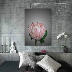 Protea portrait - Print available on Hello Pretty online store. Protea Art, Protea Flower, Flowers, Ice Cream Flower, Photo Print Sizes, Grey Wall Decor, South African Art, Garden Drawing, Fine Art Photo