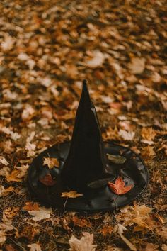 How to Build Halloween Silhouettes For a Spooky Yard - - Scare your neighbors with these easy to make Halloween silhouettes.