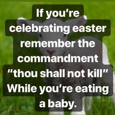 I'll never understand why people who believe, choose to ignore this commandment when it comes to animals...religious people will celebrate…