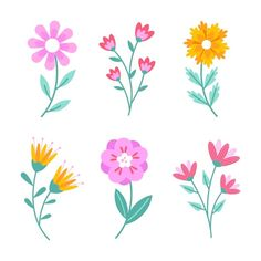 Design Plat, Flat Design, Design Floral, Motif Floral, Colorful Flowers, Spring Flowers, Flower Template, Vector Free, How To Draw Hands