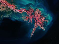 The Mississippi River from above is a delicate network of inlets and tributaries (KARI/ESA/CATERS)