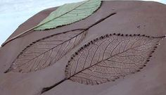 leaves printed in clay - craft idea