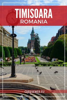 Adi takes us back to her hometown of Timisoara, Romania for a budget and family-friendly Eastern European slow travel destination. Travel Around Europe, Europe Travel Tips, European Travel, Budget Travel, Travel Pics, Beach Travel, Us Travel Destinations, Travel Tours, Shopping Travel