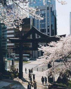 Japan ❤️