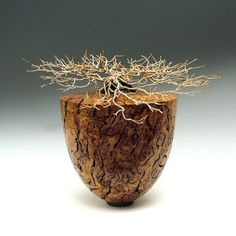 """*Wood Sculpture - """"White Top Vessel"""" by Steve Potts (Australian White Top Burl with African Ebony Inset)"""