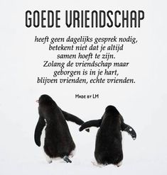 ideas quotes friendship nederlands for 2019 Best Friendship Quotes, Bff Quotes, Best Friend Quotes, Music Quotes, Happy Quotes, Positive Quotes, Love Quotes, Funny Quotes, Dutch Quotes