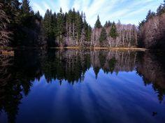 soapstone lake, or