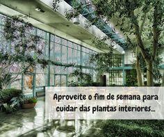 Bom fim de semana!  #oleomac #oleomacportugal #jardiminterior #plantasdeinterior #plantas #jardim