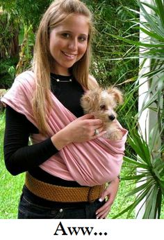 How to Make Dog Sling Awwww! Rat Terrier, Yorkie, Chihuahua, Pomeranian, Animals And Pets, Cute Animals, Dog Sling, Diy Sac, Dog Clothes Patterns