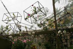 Decor com flores em caixas elevadas by Botanica Paulista