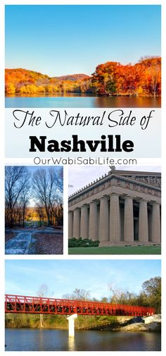 While most visit for the food, music and dancing, don't forget about The Natural Side of Nashville Nashville Things To Do, Visit Nashville, Nashville Tennessee, Travel Ideas, Travel Tips, Travel Articles, Wabi Sabi, Spring Break, Places To See