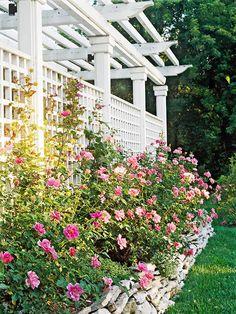 Give a backyard privacy and style with a decorative trellis. More trellis inspiration: http://www.bhg.com/home-improvement/outdoor/pergola-arbor-trellis/trellis-fence-screens/?socsrc=bhgpin080812rosecoveredtrellisfence#page=6