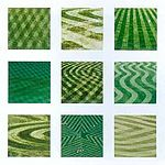 Lawn Mowing Striping – Making a Big League Lawn