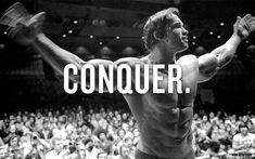 Conquer...