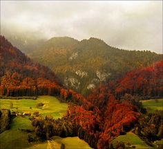 Red Heart - autumn landscape, by Katarina Stefanović. Taken in Gutsch, Lucerne, Switzerland, October 2007.