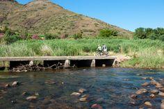 The vineyard Mountain Bike Trail