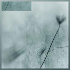 'blur flowerdream' von Michael Leinsinger bei artflakes.com als Poster oder Kunstdruck $19.41