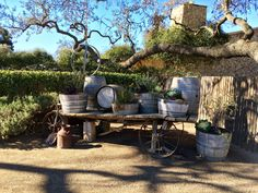 Sunstone winery!