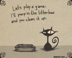 Mi gato se ha hecho pipí fuera del arenero: Cómo limpiar la orina y eliminar el olor. | La Loca de los Gatos