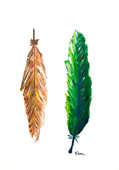 Catchii illustration, drawing, two feathers, green, brown, orange