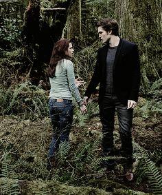Twilight Saga New Moon, Twilight Cast, Twilight Pictures, Twilight Series, Robert Pattinson Twilight, Cassie Skins, Jackson Rathbone, Kellan Lutz, Bella Swan