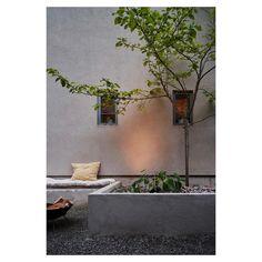 """Fantastic Frank Real Estate on Instagram: """"Still and tranquil outdoor-indoor space #jungmansvägen @fantasticfrankstockholm 📷 @emmajonssondysell"""" Indoor Outdoor, Real Estate, Plants, Space, Instagram, Floor Space, Real Estates, Plant, Inside Outside"""