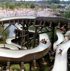 Back then: Pictured here is theWhoop 'n Holler Hollow slide at Disney's waterpark back wh...