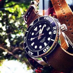 Seiko Sumo on a leather nato - top dive watch under $500 check out www.divewatchhq.com for more #DiveWatchHQ #DWHQ #Seiko #Sumo #SeikoSumo #SeikoWatch #Diving #Scuba #DiveWatch #InstaWatches #WatchesofInstagram pic credit: @dr_boon by divewatchhq