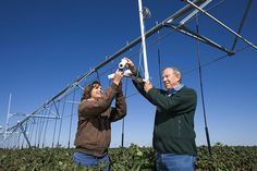 Technology to Help Us Deal with Drought - http://scienceblog.com/77951/technology-to-help-us-deal-with-drought/