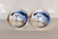 Ausgefallene Ohrringe - Ohrstecker Robbe Tier handgemacht Cabochon Glasstein