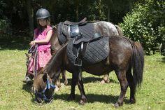 Charlotte et les poneys au camping yelloh! Village Les Mouettes. En juillet et août les enfants peuvent monter à poney dès l'âge de 2 ans