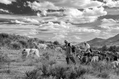 Casal pastor / shepherds (© Jorge Sarmento)