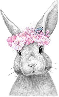 Baby Animal Drawings, Animal Sketches, Pencil Art Drawings, Cute Drawings, Bunny Drawing, Bunny Art, Bunny Painting, Lapin Art, Baby Animals