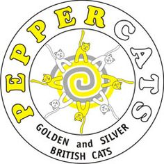 Британские кошки Питомник британских короткошерстных кошек Peppercats Уход, консультации, воспитание кошек, котят